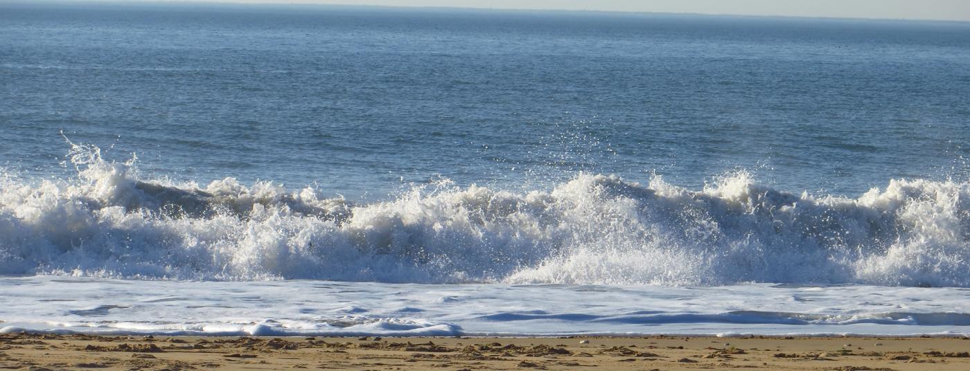 La plage des<strong> Cossonnes </strong>à deux pas de votre chambre